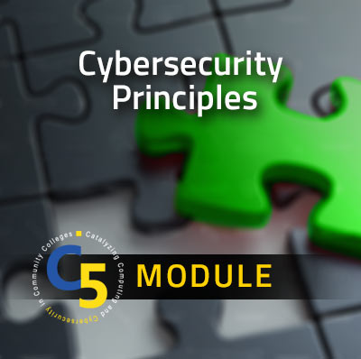 View information about the Cybersecurity Principles Module