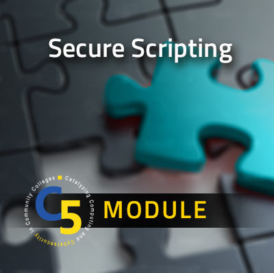 View information about the Secure Scripting Module