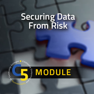 View information about the Securing Data from Risk Module